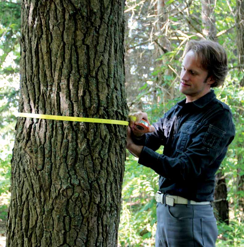 Christopher Dolanc hopes his research will bring to light the problems big trees are facing. His work has been featured in important science magazines.