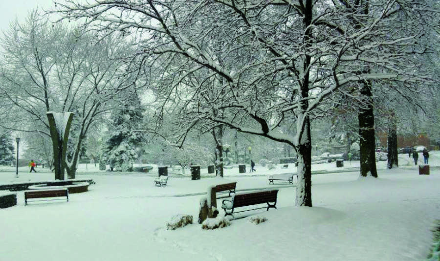 The infamous Erie winter has once again brought pain and misery, with some beauty, to Mercyhurst students.