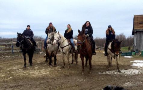 Equestrian Club seeking new members for fall