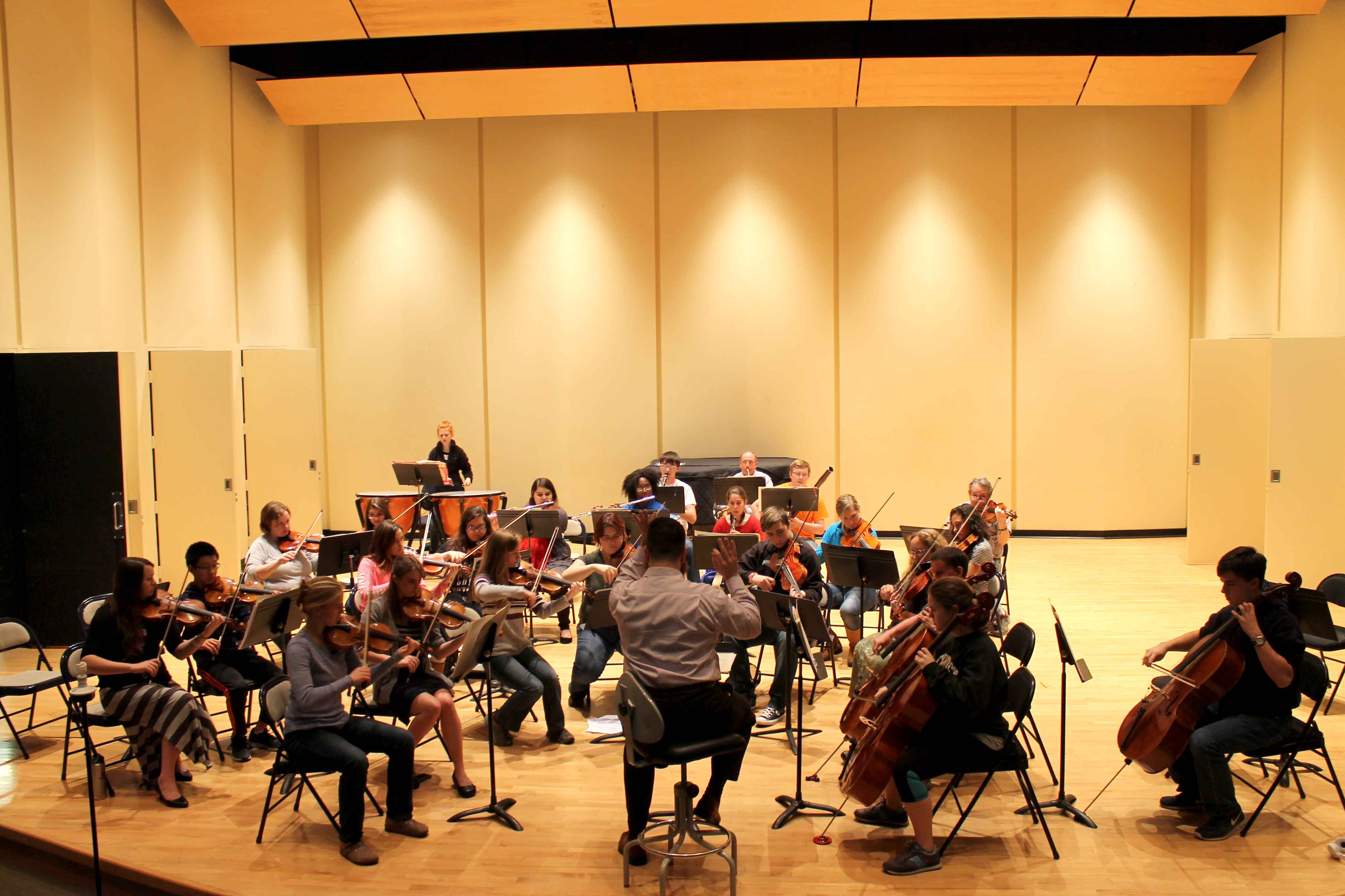 The Chamber Orchestra, led by Jonathan Moser, rehearsing for their upcoming concert.