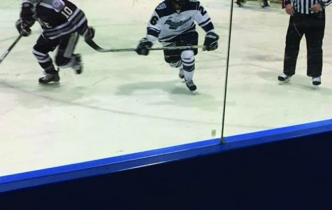 Women's ice hockey bested twice by Colgate University
