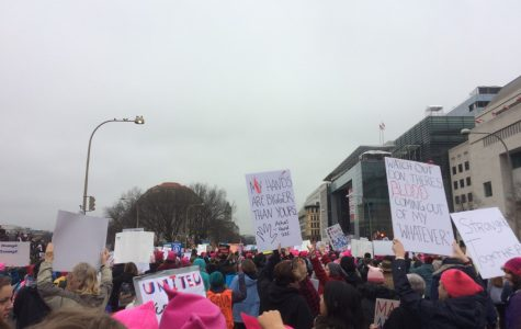 One Woman's march on Washington
