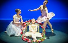 'Sleeping Beauty' graces the PAC again
