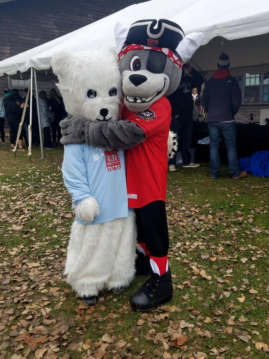 C. Wolf, the Erie SeaWolves' mascot, gives some love to the Polar Plunge mascot, Bernice, at this year's Erie Polar Plunge.
