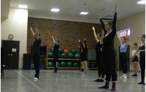Dance students to See Taylor technique by professional
