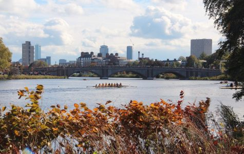 Rowing races the Charles