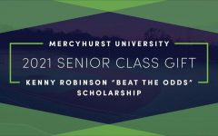 Senior Class Gift launches online crowdfunding page