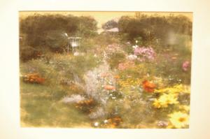 Zachary Dorsch: Cardot says that his favorite photographs in this exhibit are the digital paintings of garden scenes.