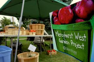 Photo by Ethan Magoc/The Merciad: Mercyhurst's Farmer's Market operates on campus in Garvey Park on Thursday afternoons and at the corner of Pine Avenue and East 38th Street on Saturdays.