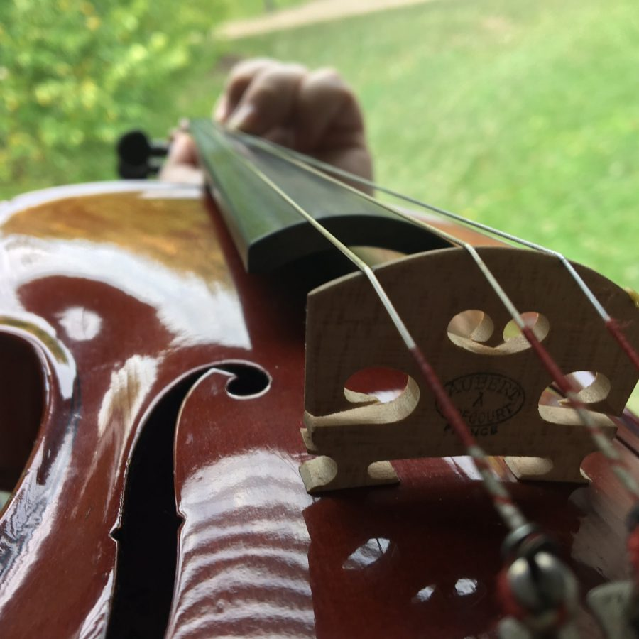 Piano and string students coming to Mercyhurst