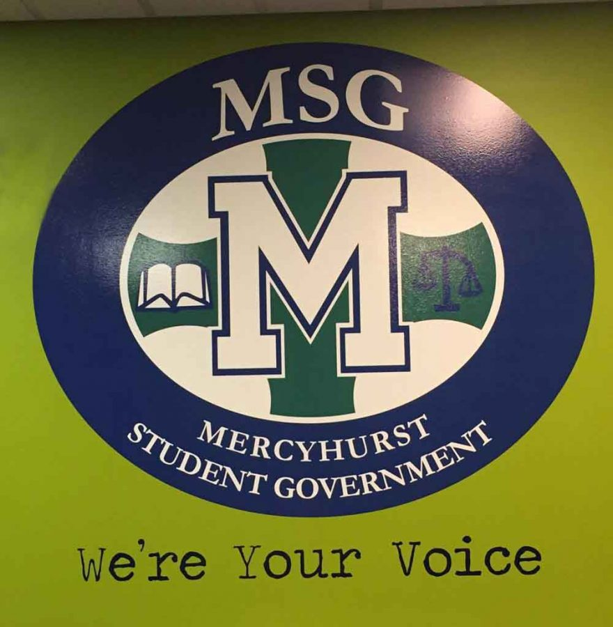 MSG Senate Elections