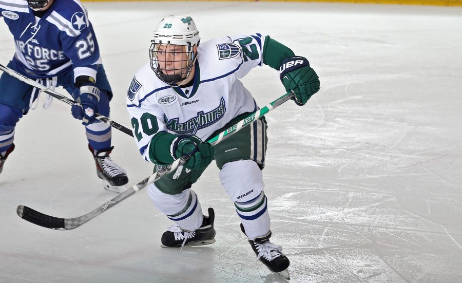 Senior Stephen Hrehoriak had seven goals and three assists for ten points for the 2016-17 season.  Hrehoriak will be trying out with the professional level Pensacola Ice Flyers of the SPHL.
