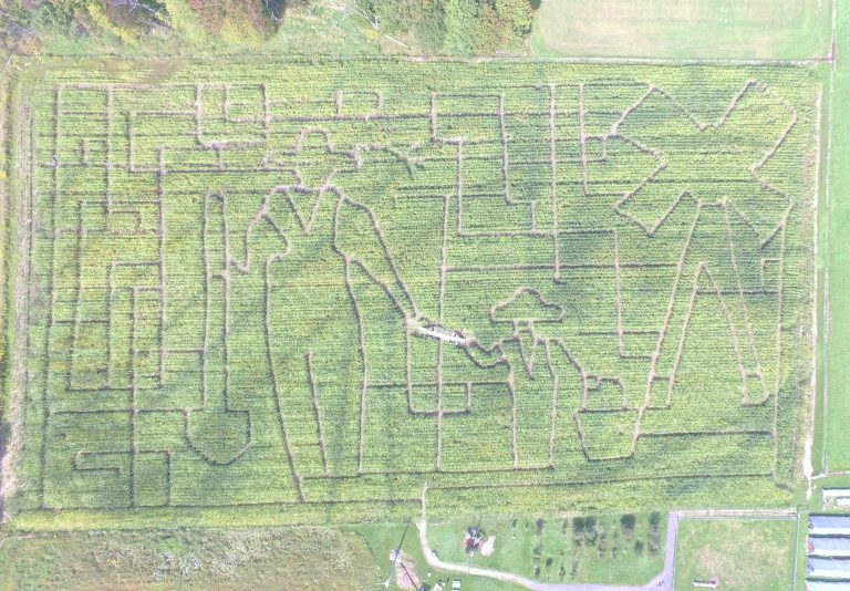 The theme for this year's corn maze at Wooden Nickel Buffalo Farm is the farmer and the next generation.