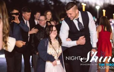 Erie shines through service
