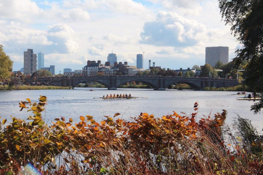 Rowing+teams+race+on+the+Charles+River+for+the+annual+Head+of+the+Charles+Regatta+in+Boston.