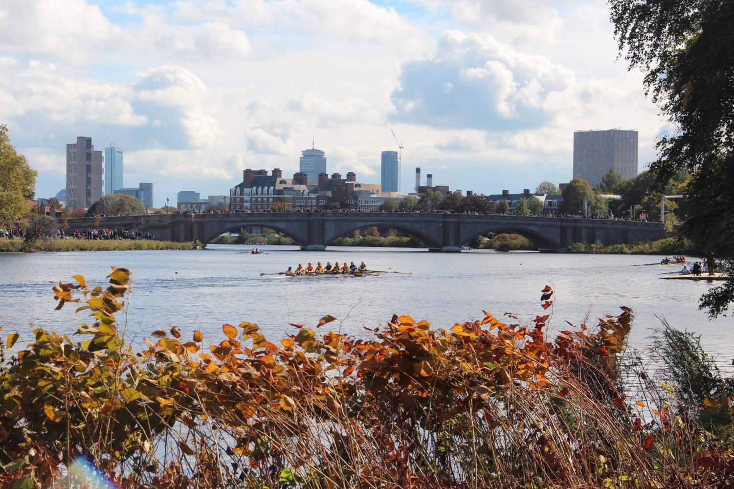Rowing teams race on the Charles River for the annual Head of the Charles Regatta in Boston.