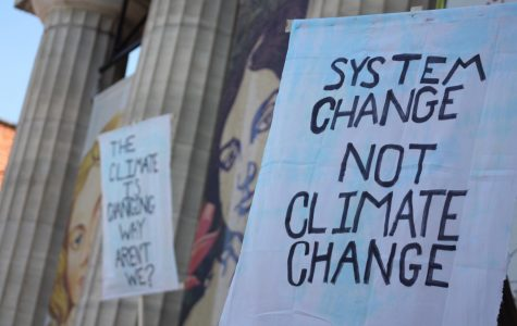 Students strike for a change in environmental policy in US