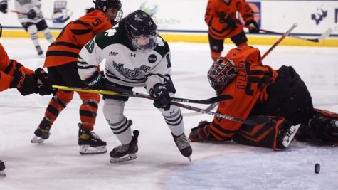 Two-game series for women's hockey