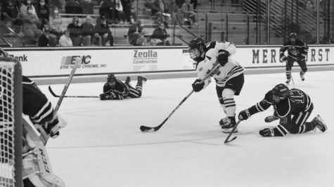 Women's hockey plays in a two-game series
